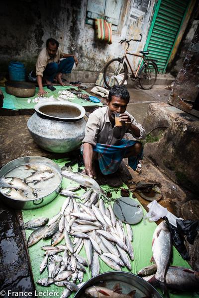 Kolkata (30 of 33)