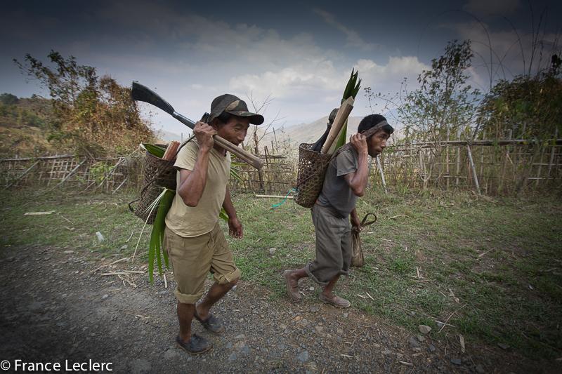 Nagaland (13 of 30)