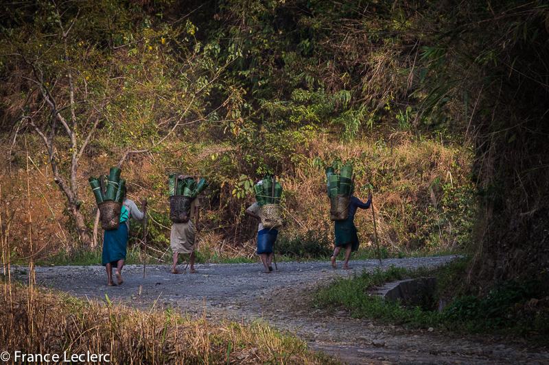 Nagaland (14 of 30)