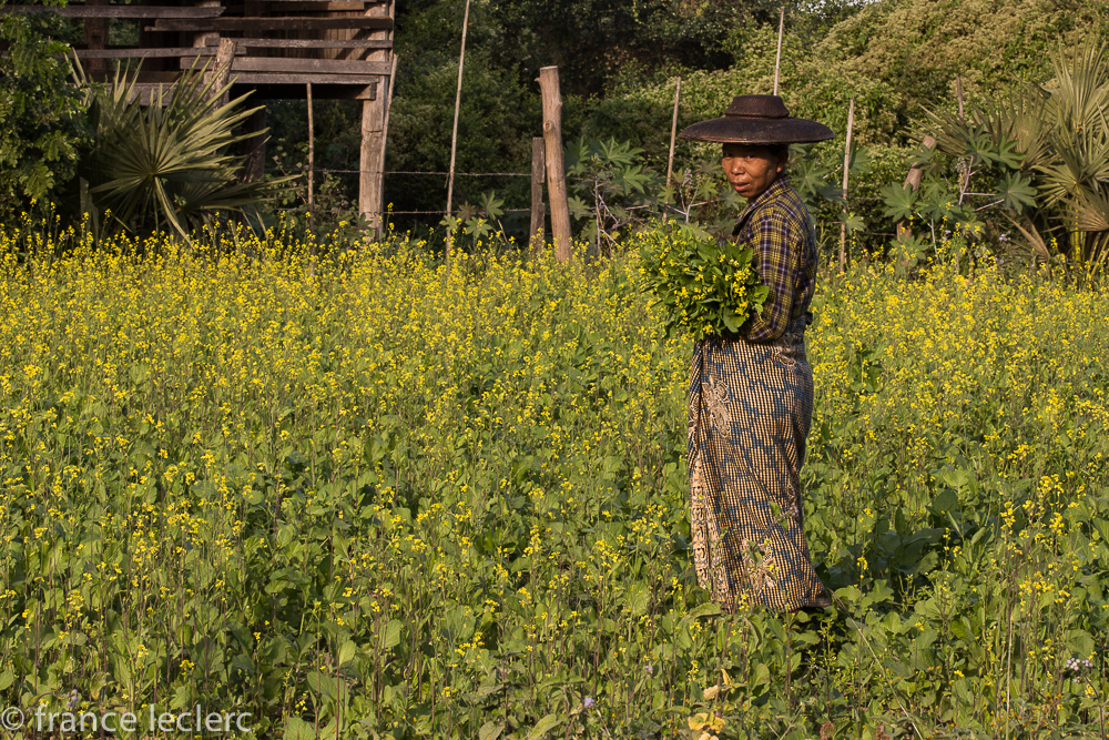 Chindwin2 (23 of 32)