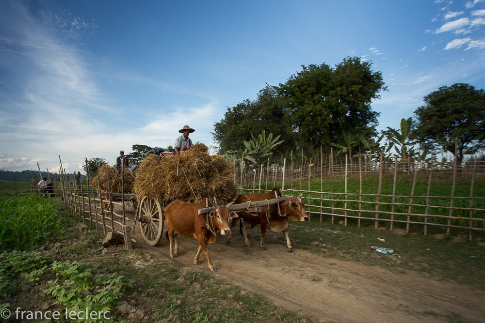 Chindwin2 (7 of 32)
