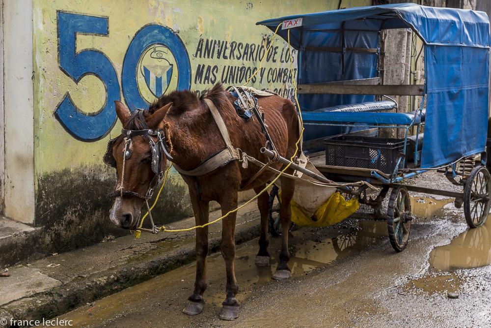 Cuba_(19_of_25)