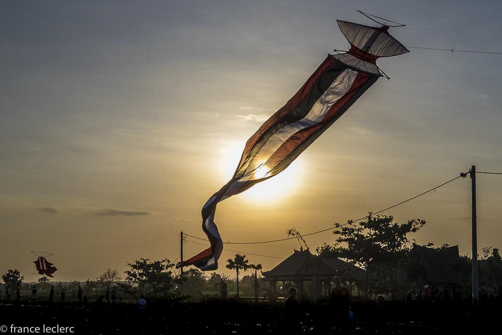 Kites_(14_of_20)