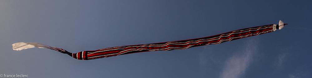 Kites_(1_of_20)