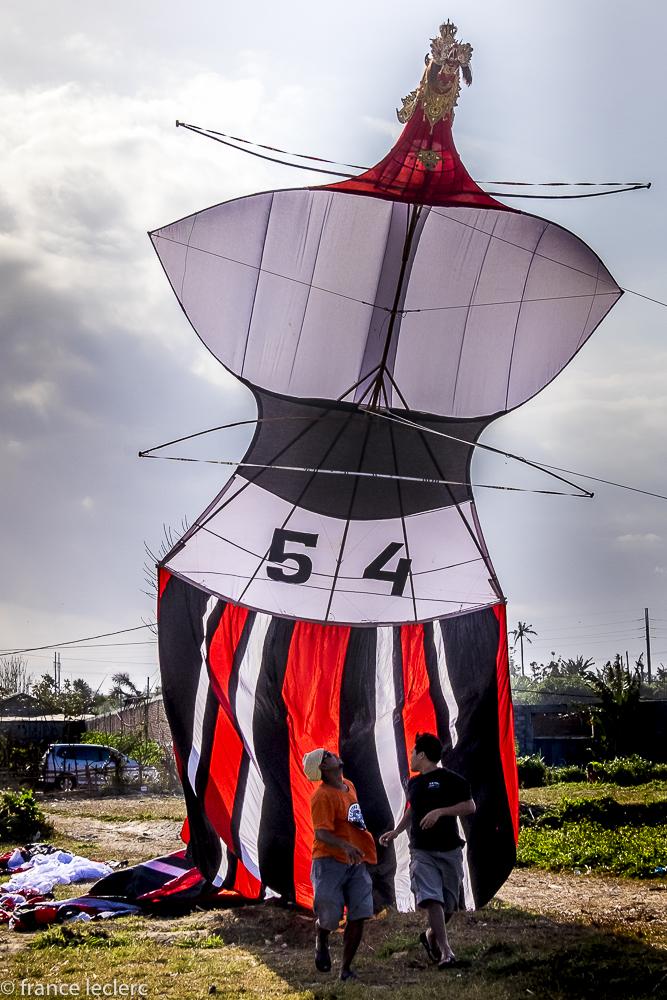 Kites_(4_of_20)