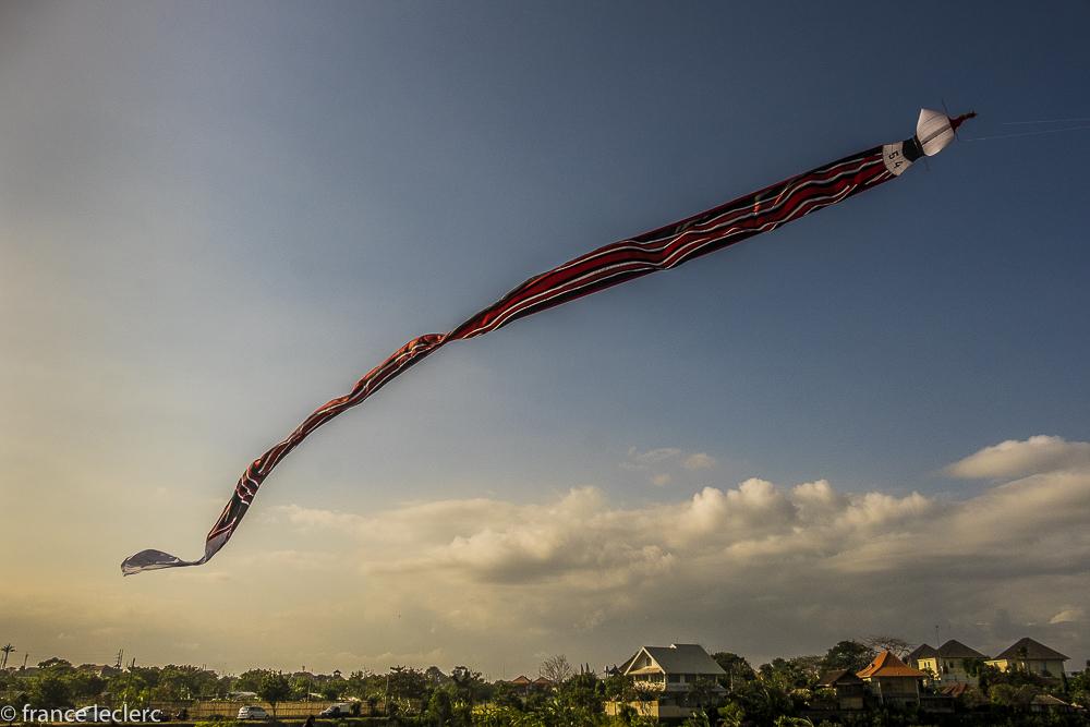 Kites_(5_of_20)