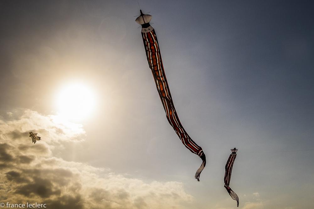 Kites_(6_of_20)
