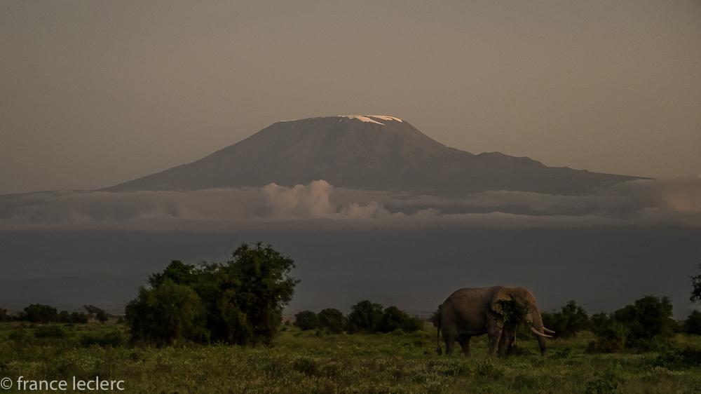 Maasai (3 of 29)