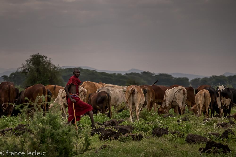 Maasai (9 of 29)