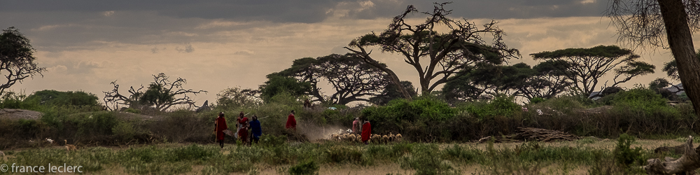 MaasaiF (1 of 2)