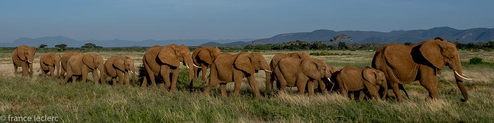 Samburu (1 of 23)